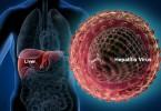 Hepatitis Viruses RT-PCR kits